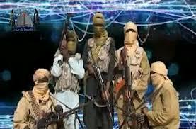 جماعة الانصار الاسلامية النيجيرية