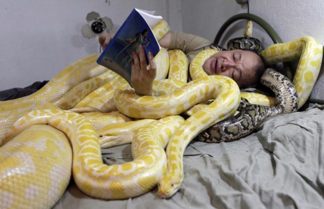 إيمانويل تاكنجو ينام بين الأفاعي