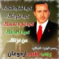 ardogan2