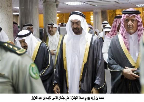 moh zayed