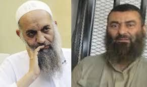 مصطفى حمزة ومحمد الظواهري