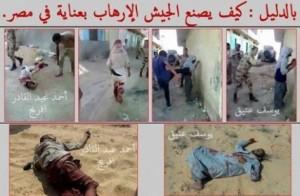 سيناء الجيش الارهاب