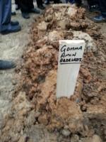 قبر الاستاذ جمعة أمين