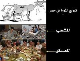 ثروة مصر
