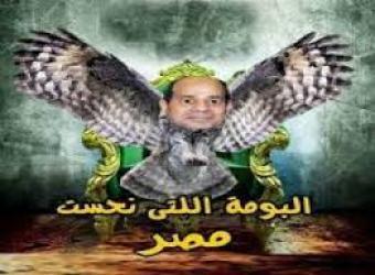 البومة نحس مصر