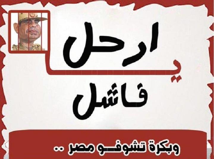 54d47fdb2 ولاية سيناء | marsadpress.net – شبكة المرصد الإخبارية