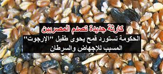 """تموين الانقلاب تستود قمع مسرطن يحتوي علي  فطر """"الإرجوت"""""""