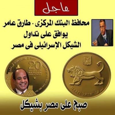 صبح على مصر بشيكل