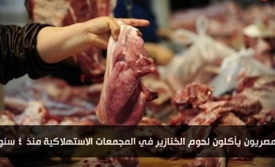 الشعب المصري يأكل لحوم الخنازير