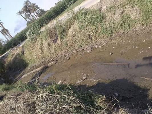 جفاف الترع ونقص مياه الري