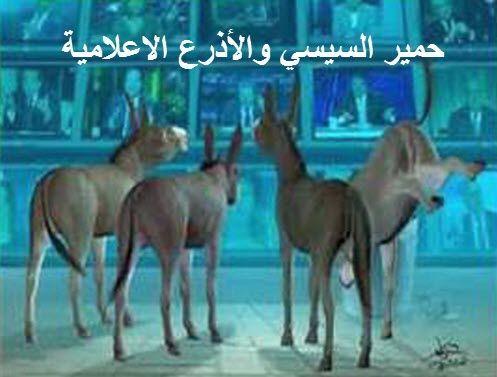حمير السيسي