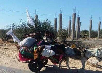 نزوح جماعي لأهالي غرب رفح