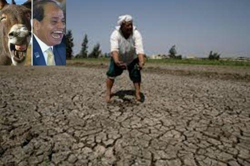 الجفاف يضرب مصر ويهدد بمجاعة