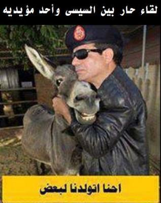 بأمر السيسي القتل والتعذيب للمصريين والحرية للحمير