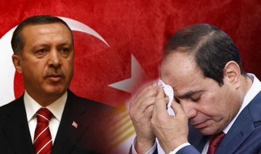 الوكالة الألمانية: السيسي خائف من تحركات أردوغان