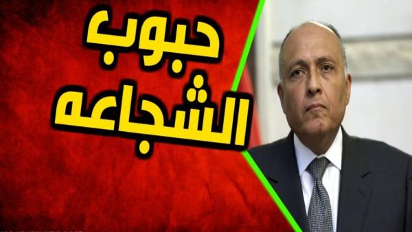 """وزير """"خارجية السيسي"""" يعترف بفشل مفاوضات""""سد النهضة"""""""