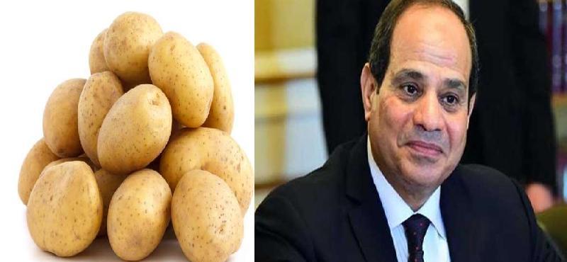 تاكلوا بطاطس ولا نبني الدولة؟ كيف ترد على سؤال الغبي؟