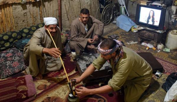مصر تتصدر المركز الخامس عالميًّا في استهلاك الحشيش