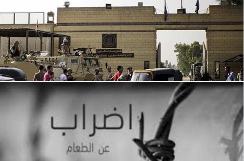 d04b4d0c8 سجن برج العرب | marsadpress.net – شبكة المرصد الإخبارية