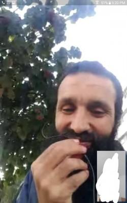 محمد بن الهادي مساهل