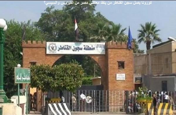 كورونا يصل سجن القناطر من ينقذ معتقلي مصر من الفيروس والسيسي؟