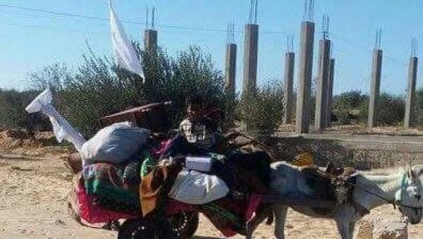 نزوح جماعي من سيناء